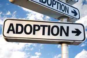 Adoption Attorney Ocean County NJ